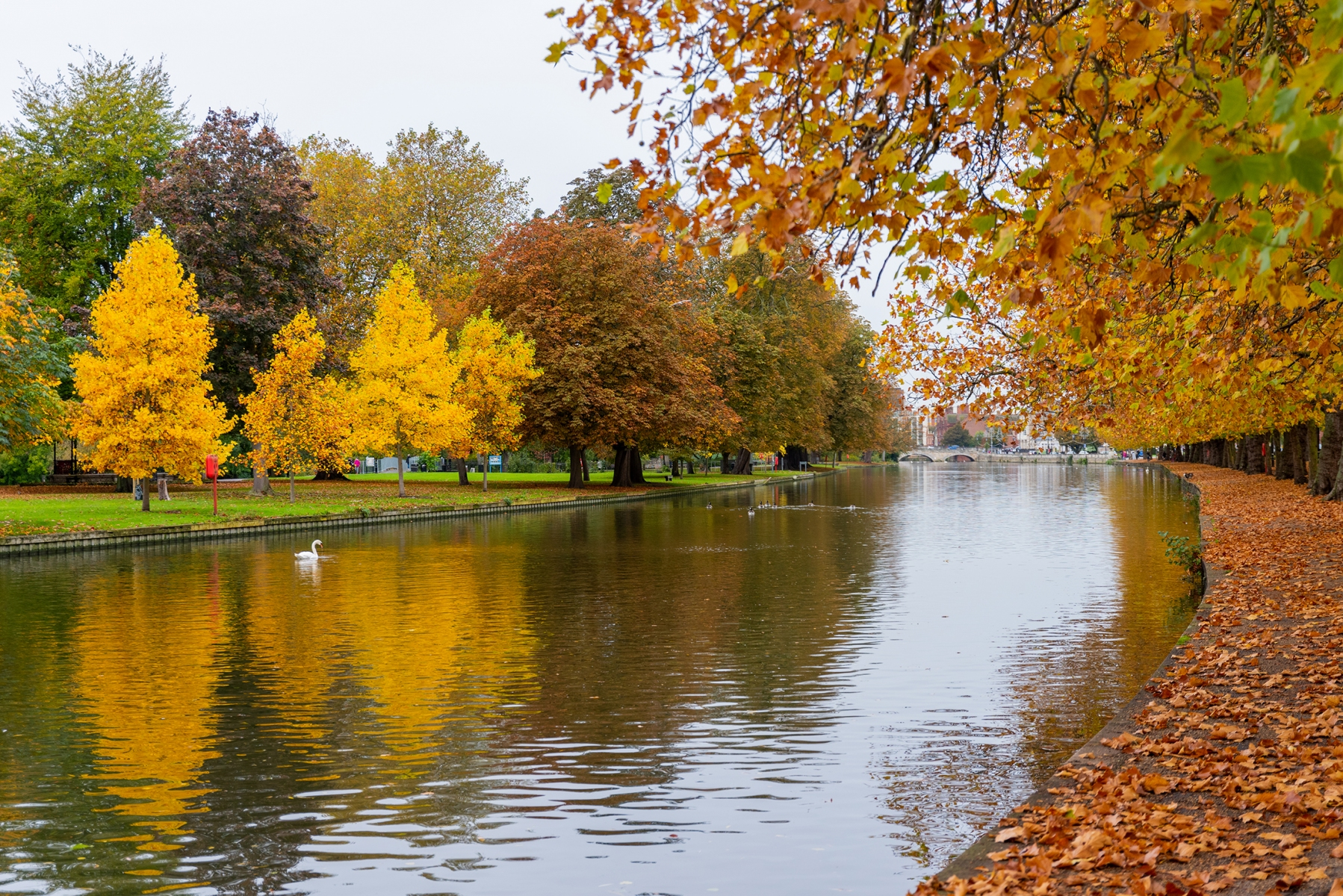 River Great Ouse, The Embankment, Bedford in Autumn